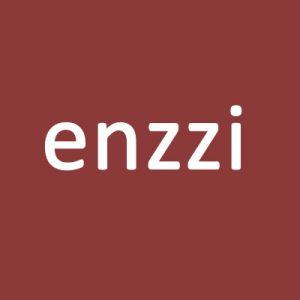 enzzi.com for sale on Brandta