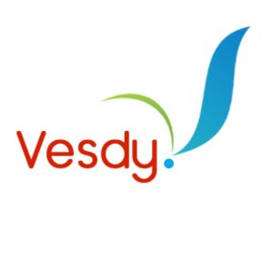 vesdy.com for sale on brandta
